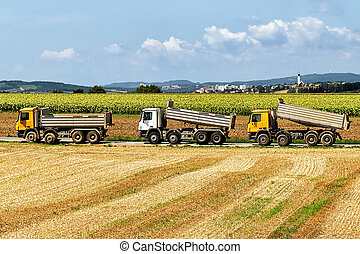 Trucks after doing agricultural seasonal work in field -...