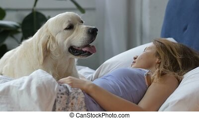 True friend dog waiting for awakening of pet owner - Close...