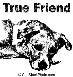 true friend my dog graphic