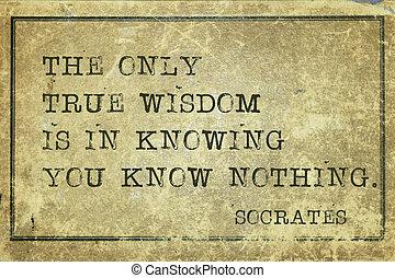 true Wisdom-print - true wisdom is in knowing you know...