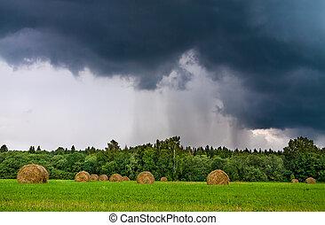 trueno, tiempo, nubes de la tormenta, lluvia