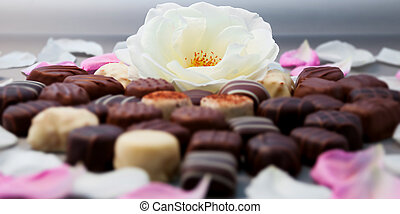 truffes, chocolat, whi, romantique