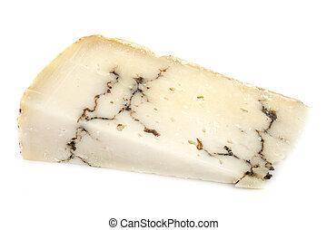 truffle cheese in studio