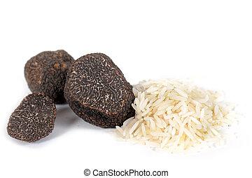 truffles and rice - black truffles (tuber melanosporum)with ...