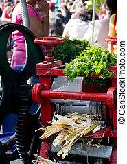 trumma, press, använd, till, juice, sugarcane, in, indien