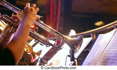 Trumpet sax music bar - Trumpet and sax of band are playing...