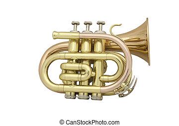 trumpet under the white background