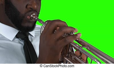 Trumpeter on green background.