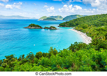 Trunk Bay, St John