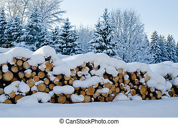Trunks of felled trees and stacked pile - Stack of cut ...