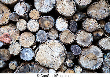 Trunks of pines cut
