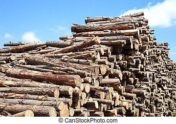 Trunks of wood