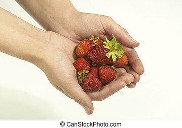 truskawka, dłoń