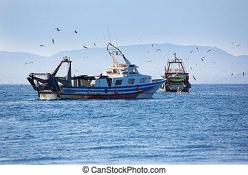 trwler, barcos, com, gaivotas, em, ibiza, formentera