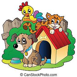 trzy, domowe zwierzęta