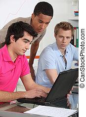 trzy, samiec, studenci, korygujący, razem