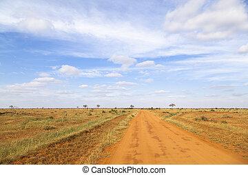 Landscape in Tsavo East National Park in Kenya.