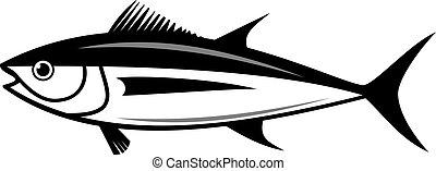 tuńczyk, wektor, sylwetka, fish