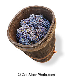 tub with grapes - clipping path