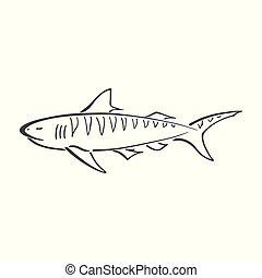 tubarão, abstratos, simplificado, mar, tinta, logotipo, oceânicos, desenho, sketch., cartoon., doodle, personagem, pintura, retro, animal, desenhado, print., blue., sinal., mão, tiger, tecido, papel parede, illustration., curva, elemento, vetorial
