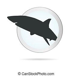 tubarão, círculo, ilustração, sinal