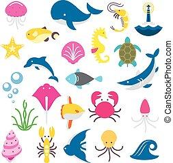 tubarão, peixe, dolphine, calmar, beasts, mar, isolado, polvo, baleia, peixes, tartaruga, carangueijo, medusa