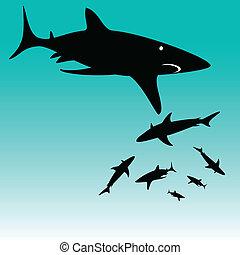 tubarão, vetorial, silhuetas