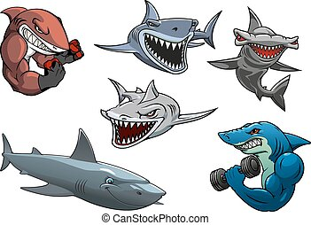 tubarões, hammerhead, zangado, cinzento, caráteres, branca,...