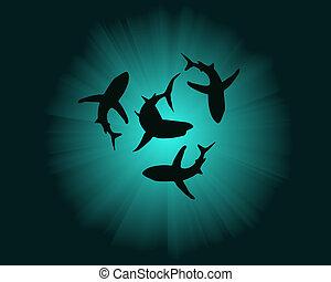 tubarões, silhuetas