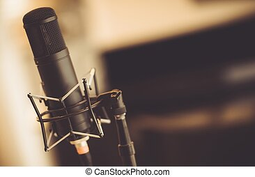 Tube Microphone in Studio - Professional Tube Microphone in...