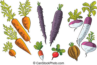 Tuber Collection - cartoon illustration of various tubers