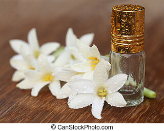 Tuberose or Rajnigandha of Southeast Asia with essence...