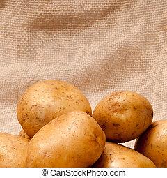 tubers, batata