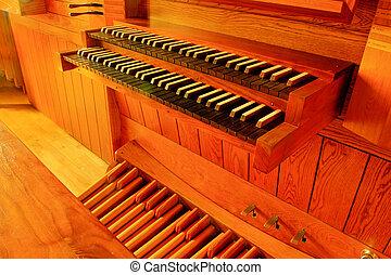 tubo, rastreador, órgano