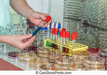 tubo teste, químico, mão