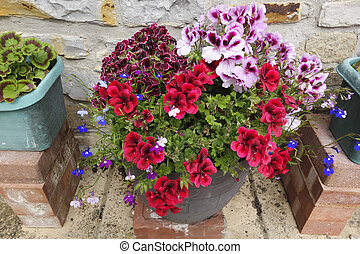 Tubs of Country Flowers