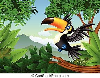 tucán, selva, caricatura