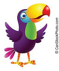 tucano, pássaro, caricatura