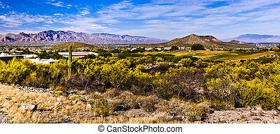 tucson, arizona, zona