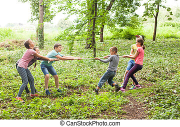 Tug-of-war in park