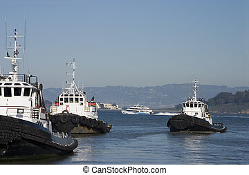 A group of tugboats chug along in San Francisco bay.