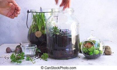 tuin, binnen, metselaarkruik
