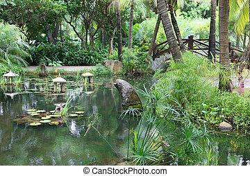 tuin, chinees, classieke, traditionele , china, zuiden