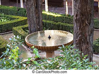 tuin, granada, andalusia, spanje, alhambra, fontijn