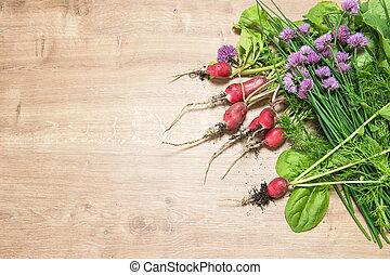 tuin, ingredienten, gezonde , radijsje, voedingsmiddelen, groene, fris, herbs.