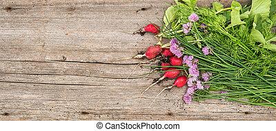 tuin, keukenkruiden, gezonde , radijsje, voedingsmiddelen, groen groente, fris, wortels