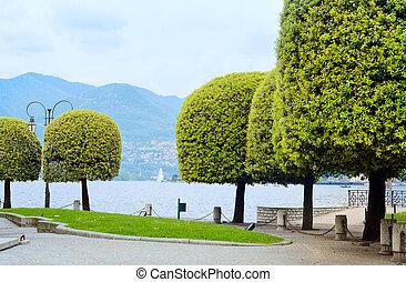 tuin, lakeside., italië, bomen, meer, como, europe.