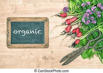 tuin, radijsje, groentes, herbs., chalkboard, fris, groene