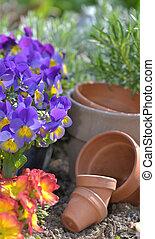 tuin, terrein, potten, terra cotta, bloemen