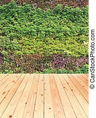 tuin, verticaal, vloer, muur, hout, groene